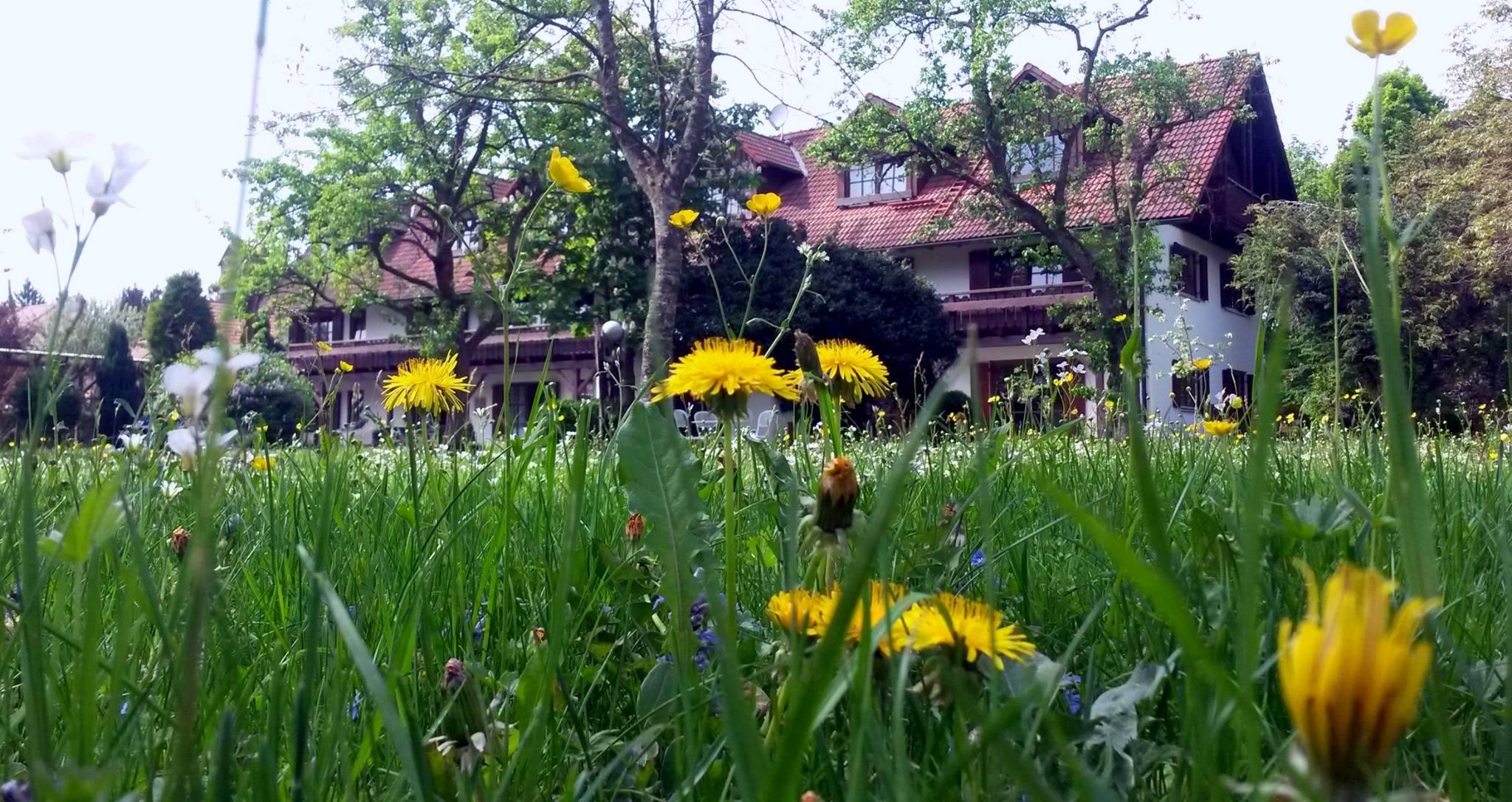 Garten im Frühling_bearbeitet